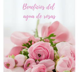 Ya nuestras abuelas utilizaban el agua de rosas como producto de belleza... natural y con múltiples beneficios.